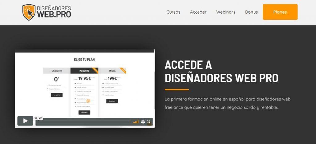 Diseñadores Web Pro